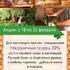 АКЦИИ WELLNESS-ЦЕНТРА 18-24 ФЕВРАЛЯ